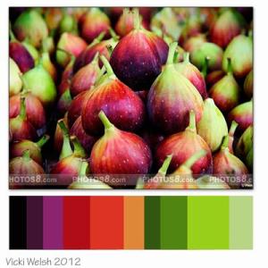 Feb Color Challenge